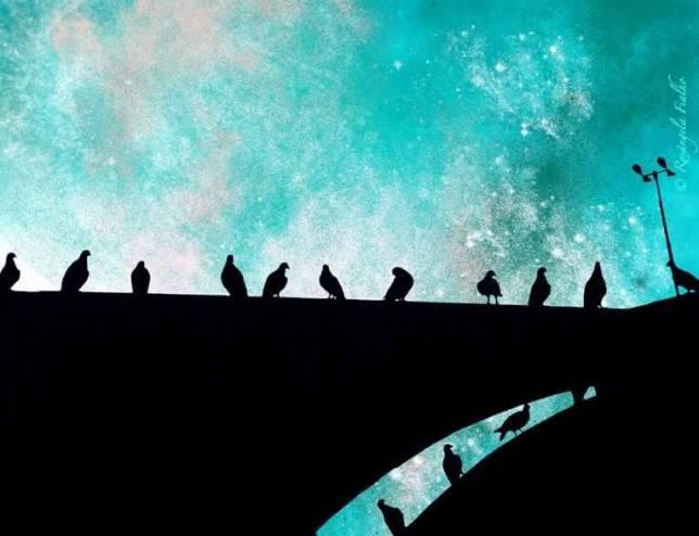 Silhueta Pássaros, Praça da Sé, São Paulo, Brasil