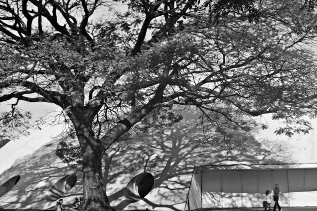 Oca do Ibirapuera